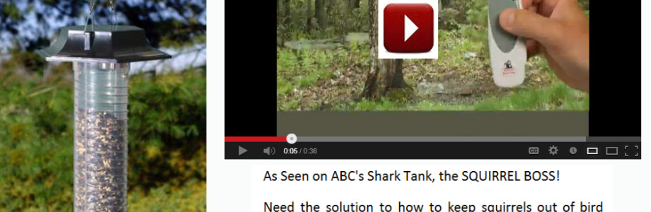 Anti Squirrel Bird Feeder | As Seen on Shark Tank