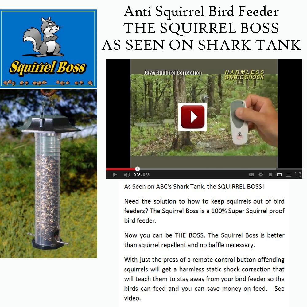AntiSquirrelBirdFeeder